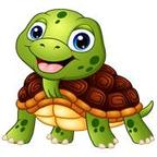 养龟赚钱手机版下载