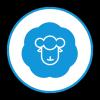 全民羊毛党最新版(生活休闲) v1.0.1 安卓版