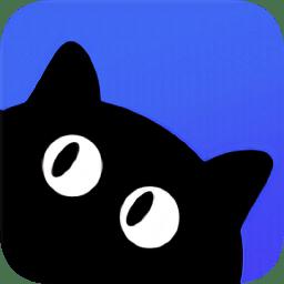 新媒猫安卓版