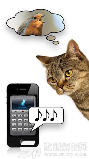 猫语翻译器安卓版(趣味娱乐) v2.5.5 最新版