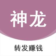 神龍資訊手機app