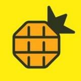 網易菠蘿視頻免費版