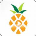 菠萝音乐网安卓手机app