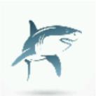 鯊魚音樂播放器手機app