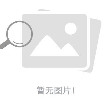程祥软件网络资源搜索神器绿色版