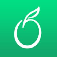 网易青果摄像机最新版(图形图像) v2.8.2 安卓版
