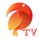 鹦鹉云直播tv安卓版