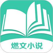 燃文小说网安卓版