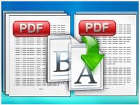 Boxoft pdf Renamer绿色版